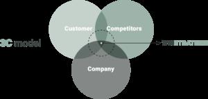 3C model naar winstrategie